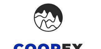 Краткий обзор проекта Coopex